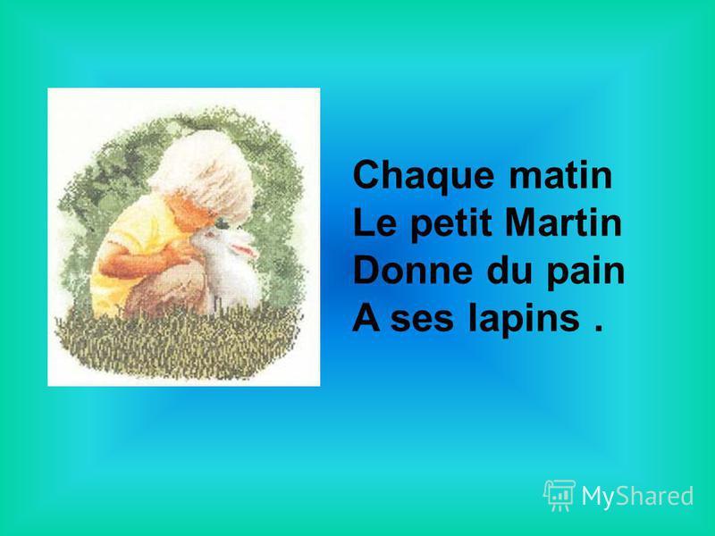 Chaque matin Le petit Martin Donne du pain A ses lapins.