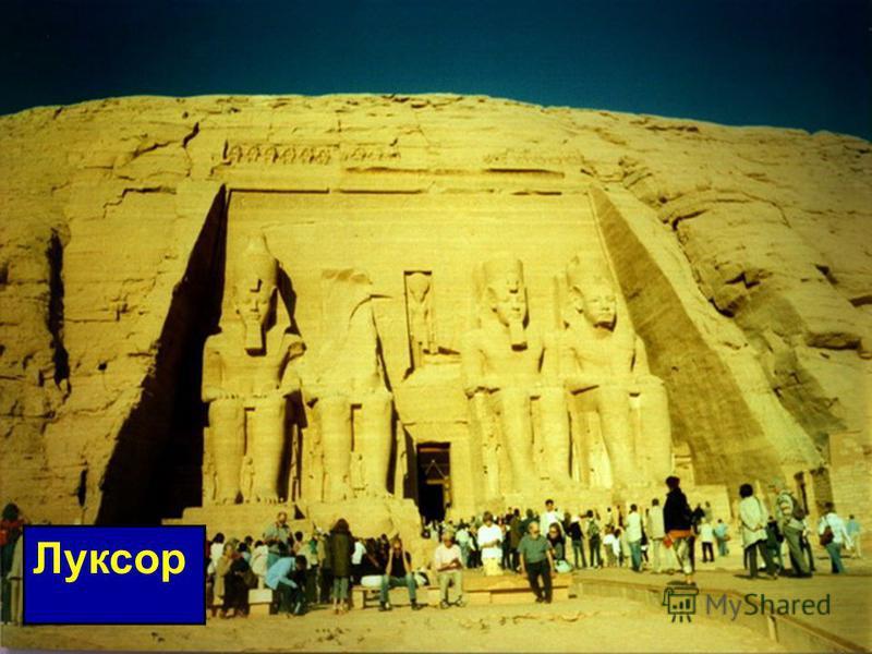 Египтяне считали многих животных священными. Они почитали льва, быка, ибиса, собаку, кошку, коршуна, сокола, крокодила, кобру, скорпиона, жука- скарабея.