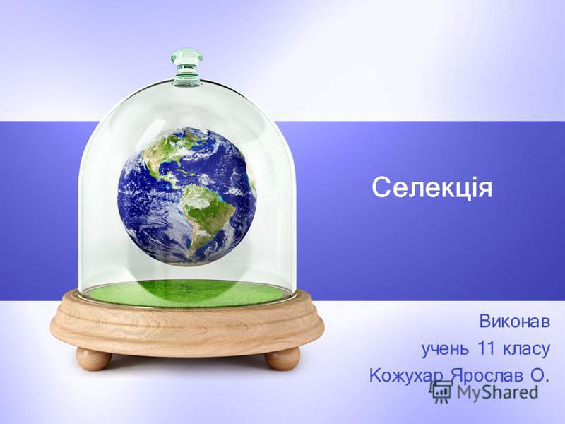 Селекція Виконав учень 11 класу Кожухар Ярослав О.