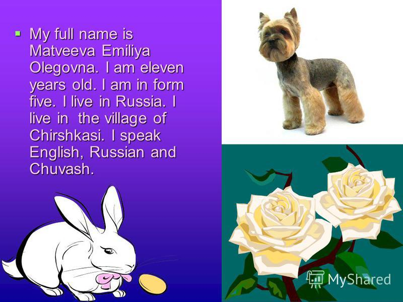 My full name is Matveeva Emiliya Olegovna. I am eleven years old. I am in form five. I live in Russia. I live in the village of Chirshkasi. I speak English, Russian and Chuvash.
