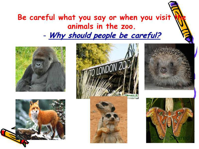 - Why should people be careful? Be careful what you say or when you visit the animals in the zoo. - Why should people be careful?