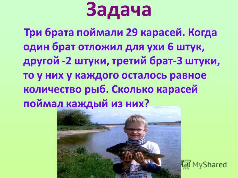 Задача Три брата поймали 29 карасей. Когда один брат отложил для ухи 6 штук, другой -2 штуки, третий брат-3 штуки, то у них у каждого осталось равное количество рыб. Сколько карасей поймал каждый из них?
