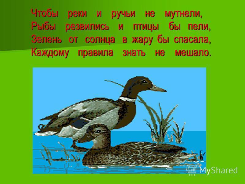 Чтобы реки и ручьи не мутнели, Рыбы резвились и птицы бы пели, Зелень от солнца в жару бы спасала, Каждому правила знать не мешало.