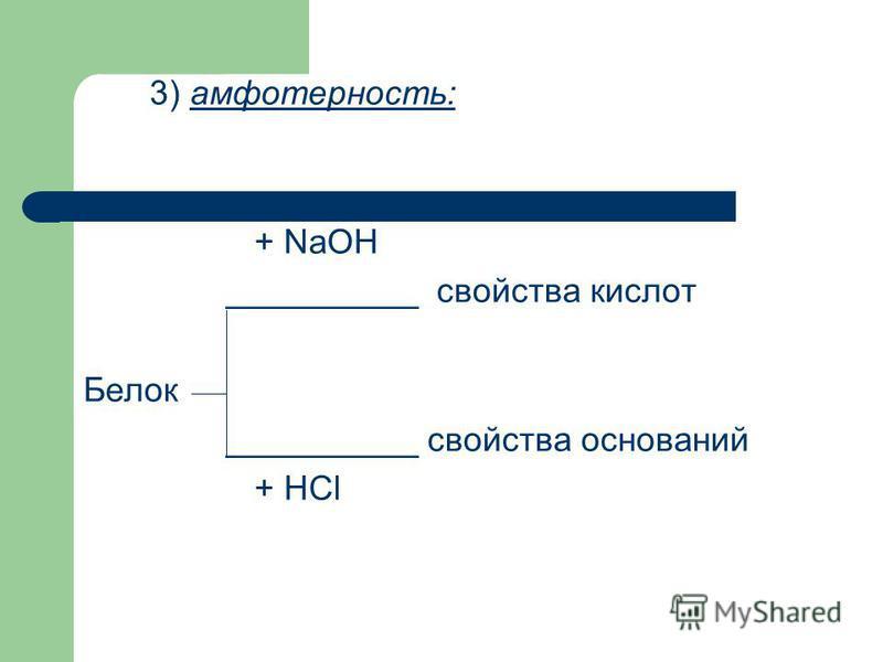 3) амфотерность: + NaOH __________ свойства кислот Белок __________ свойства оснований + HCl