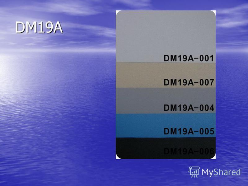 DM19A