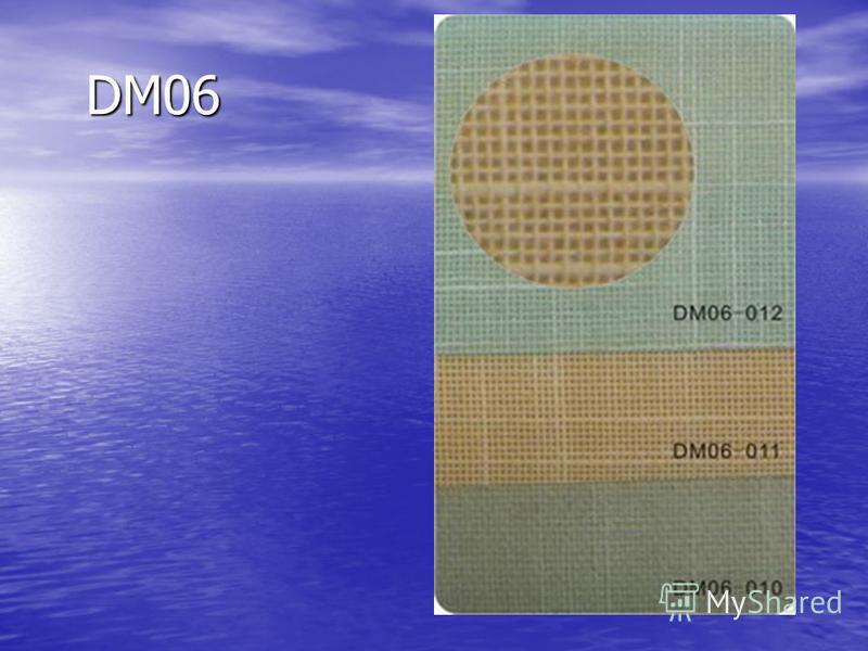 DM06 DM06