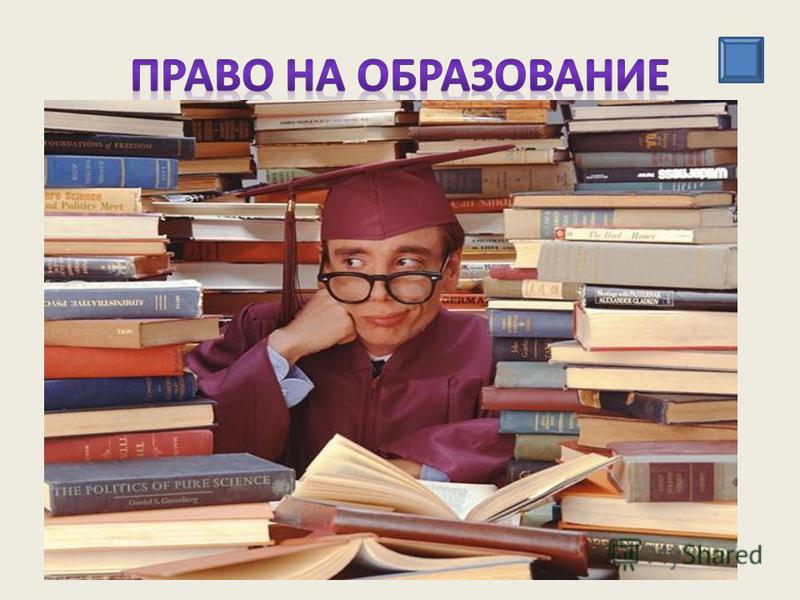 - право на получение бесплатного начального или среднего образования в государственных образовательных учреждениях; - право на выбор родителями формы обучения для своего ребенка; - право на учреждение частных учебных заведений и др.