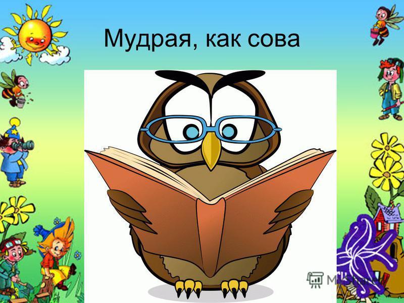 Мудрая, как сова