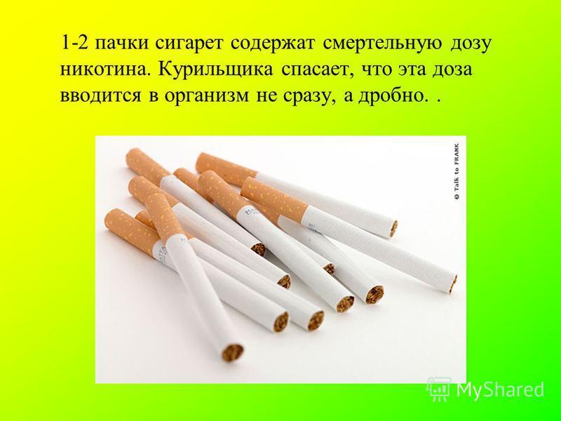 . 1-2 пачки сигарет содержат смертельную дозу никотина. Курильщика спасает, что эта доза вводится в организм не сразу, а дробно..