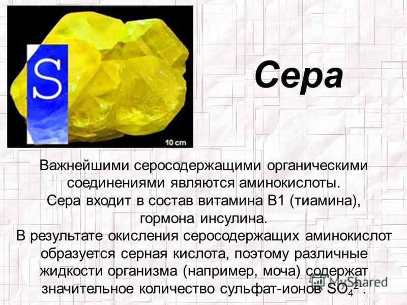 Сера Важнейшими серосодержащими органическими соединениями являются аминокислоты. Сера входит в состав витамина В1 (тиамина), гормона инсулина. В результате окисления серосодержащих аминокислот образуется серная кислота, поэтому различные жидкости ор
