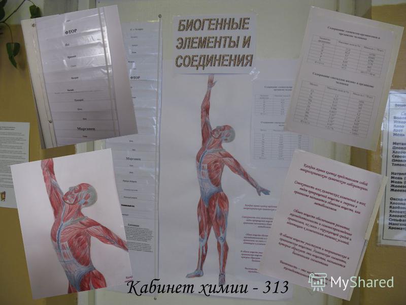 Кабинет химии - 313
