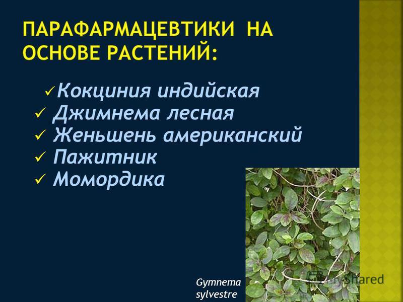 Кокциния индийская Джимнема лесная Женьшень американский Пажитник Момордика Gymnema sylvestre