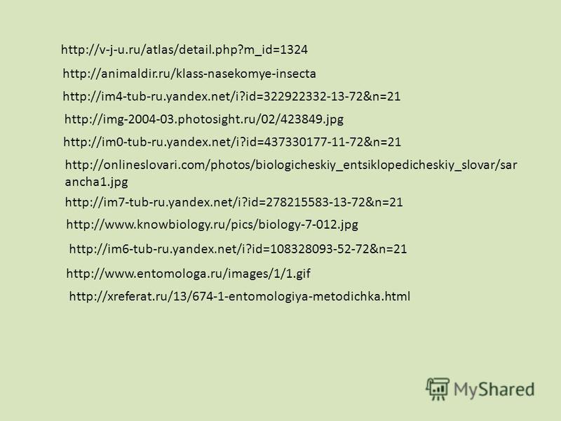 http://v-j-u.ru/atlas/detail.php?m_id=1324 http://animaldir.ru/klass-nasekomye-insecta http://img-2004-03.photosight.ru/02/423849. jpg http://im4-tub-ru.yandex.net/i?id=322922332-13-72&n=21 http://im0-tub-ru.yandex.net/i?id=437330177-11-72&n=21 http: