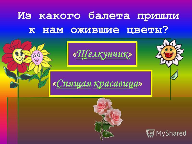 Из какого балета пришли к нам ожившие цветы? «Щелкунчик»Щелкунчик «Спящая красавица»Спящаякрасавица