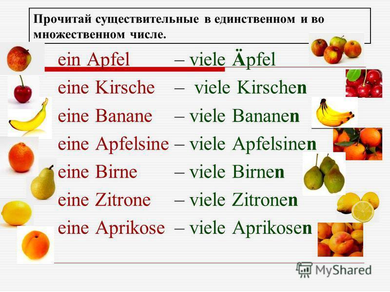 Прочитай существительные в единственном и во множественном числе. ein Apfel– viele Äpfel eine Kirsche– viele Kirschen eine Banane– viele Bananen eine Apfelsine– viele Apfelsinen eine Birne– viele Birnen eine Zitrone– viele Zitronen eine Aprikose– vie