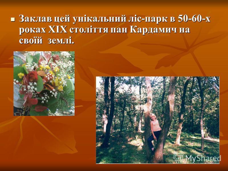 Заклав цей унікальний ліс-парк в 50-60-х роках ХІХ століття пан Кардамич на своїй землі.