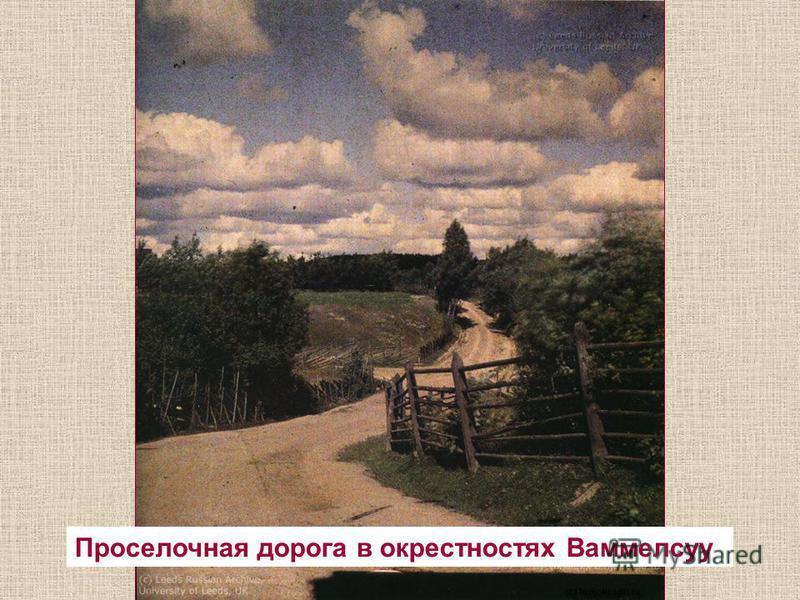 Проселочная дорога в окрестностях Ваммелсуу