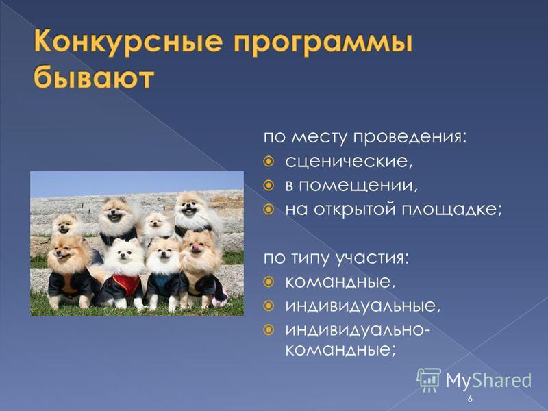 по месту проведения: сценические, в помещении, на открытой площадке; по типу участия: командные, индивидуальные, индивидуально- командные; 6
