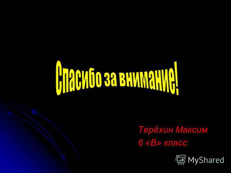 Терёхин Максим 6 «В» класс