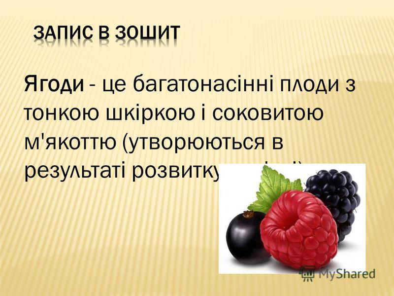 Ягоди - це багатонасінні плоди з тонкою шкіркою і соковитою м'якоттю (утворюються в результаті розвитку зав'язі).