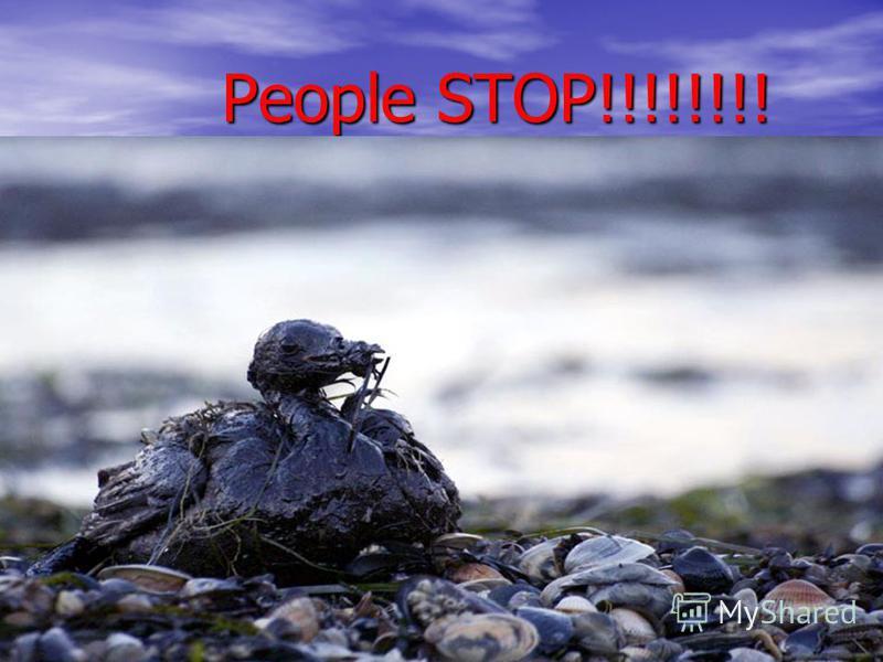 People STOP!!!!!!!! People STOP!!!!!!!!