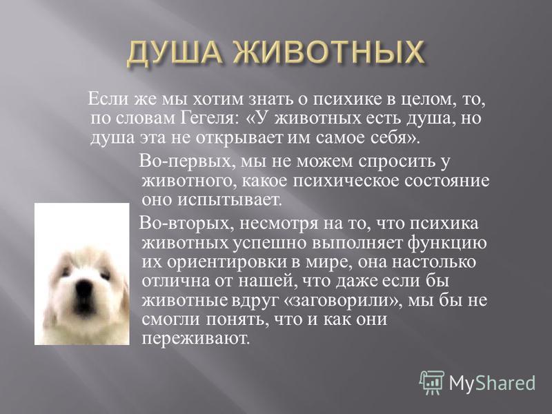 Если же мы хотим знать о психике в целом, то, по словам Гегеля : « У животных есть душа, но душа эта не открывает им самое себя ». Во - первых, мы не можем спросить у животного, какое психическое состояние оно испытывает. Во - вторых, несмотря на то,