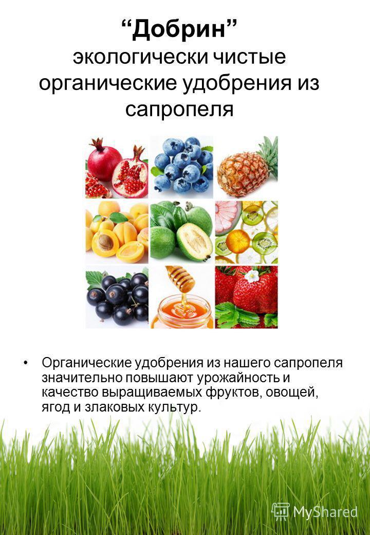 Добрин экологически чистые органические удобрения из сапропеля Органические удобрения из нашего сапропеля значительно повышают урожайность и качество выращиваемых фруктов, овощей, ягод и злаковых культур.