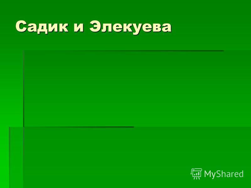 Садик и Элекуева