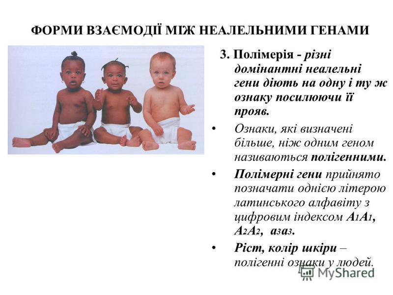 ФОРМИ ВЗАЄМОДІЇ МІЖ НЕАЛЕЛЬНИМИ ГЕНАМИ 3. Полімерія - різні домінантні неалельні гени діють на одну і ту ж ознаку посилюючи її прояв. Ознаки, які визначені більше, ніж одним геном називаються полігенними. Полімерні гени прийнято позначати однією літе
