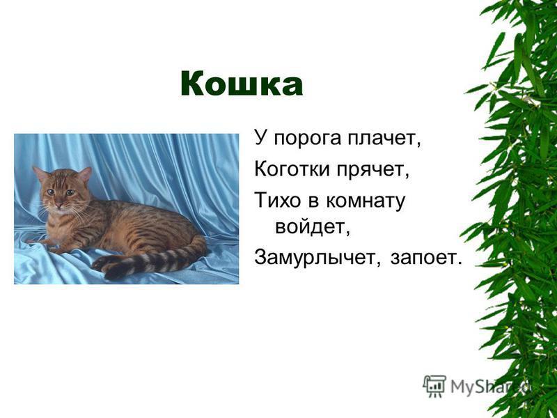 Кошка У порога плачет, Коготки прячет, Тихо в комнату войдет, Замурлычет, запоет.