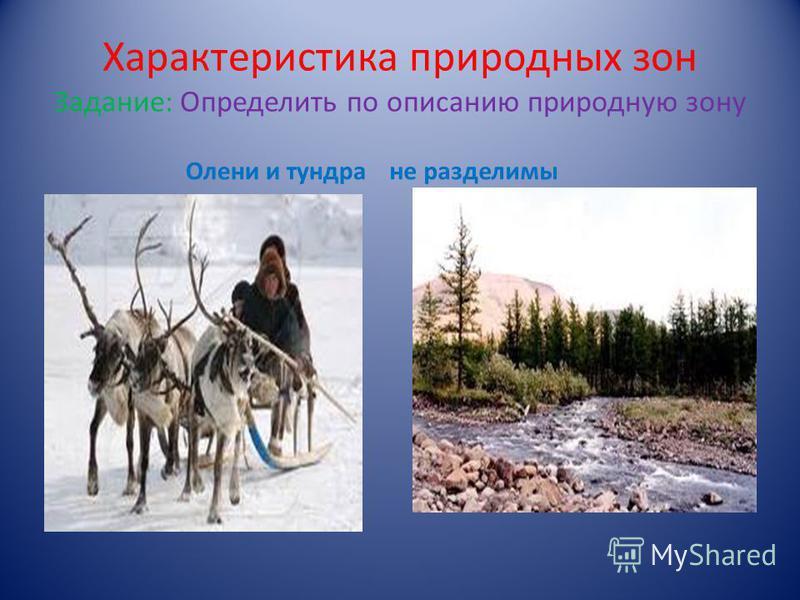 Характеристика природных зон Задание: Определить по описанию природную зону Олени и тундра неразделимы