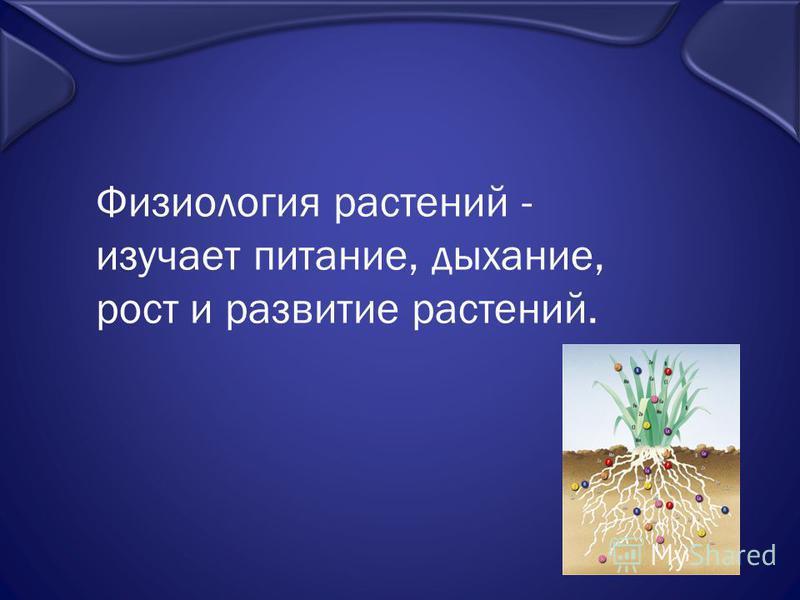 Физиология растений - изучает питание, дыхание, рост и развитие растений.