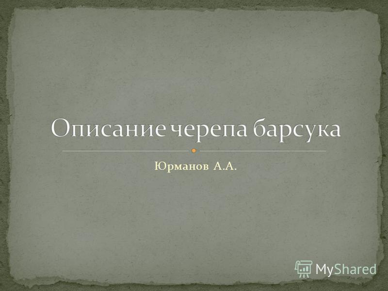 Юрманов А.А.