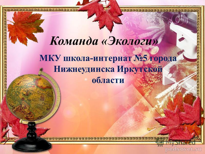 Команда «Экологи» МКУ школа-интернат 5 города Нижнеудинска Иркутской области