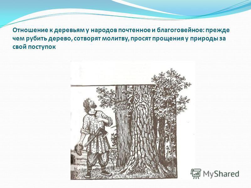 Отношение к деревьям у народов почтенное и благоговейное: прежде чем рубить дерево, сотворят молитву, просят прощения у природы за свой поступок
