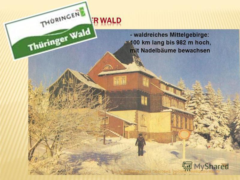 - waldreiches Mittelgebirge: 100 km lang bis 982 m hoch, mit Nadelbäume bewachsen Ракитская Ольга Олеговна, учитель немецкого языка