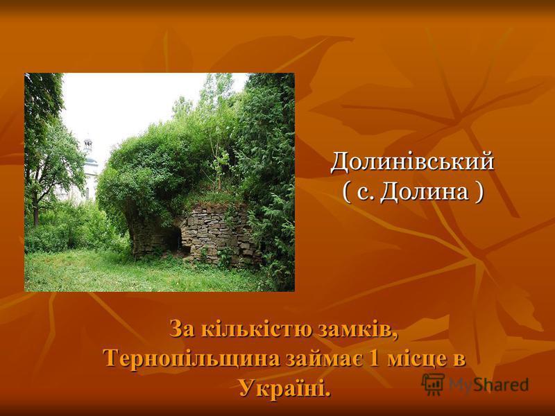 Долинівський ( с. Долина ) За кількістю замків, Тернопільщина займає 1 місце в Україні.