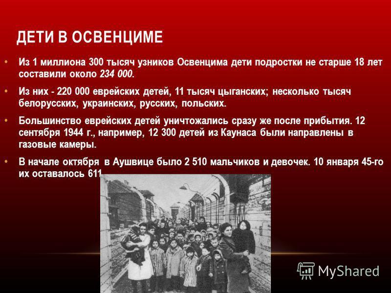 ДЕТИ В ОСВЕНЦИМЕ Из 1 миллиона 300 тысяч узников Освенцима дети подростки не старше 18 лет составили около 234 000. Из них - 220 000 еврейских детей, 11 тысяч цыганских; несколько тысяч белорусских, украинских, русских, польских. Большинство еврейски