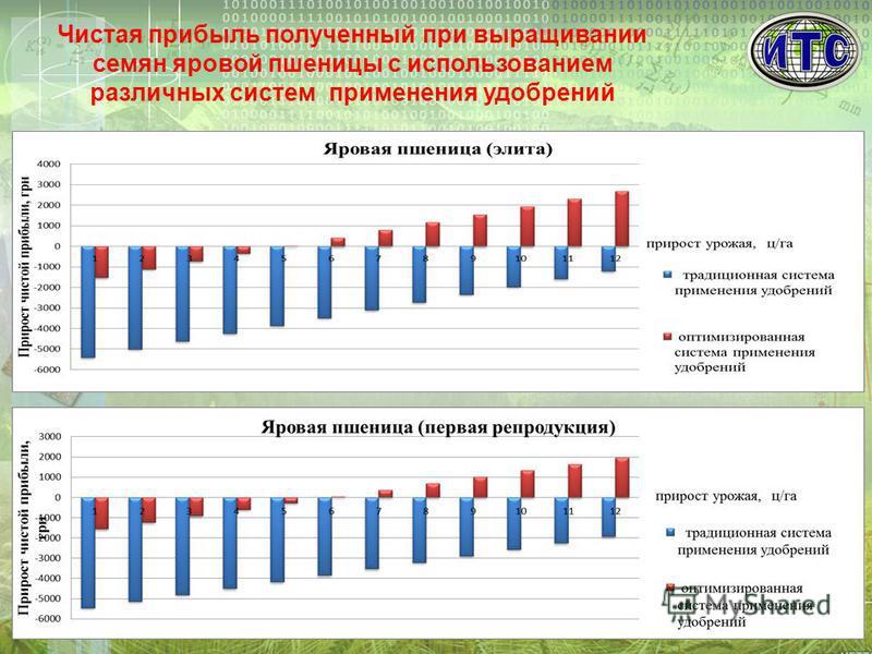 Чистая прибыль полученный при выращивании семян яровой пшеницы с использованием различных систем применения удобрений