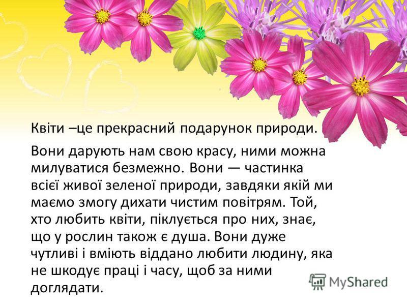 Квіти –це прекрасний подарунок природи. Вони дарують нам свою красу, ними можна милуватися безмежно. Вони частинка всієї живої зеленої природи, завдяки якій ми маємо змогу дихати чистим повітрям. Той, хто любить квіти, піклується про них, знає, що у
