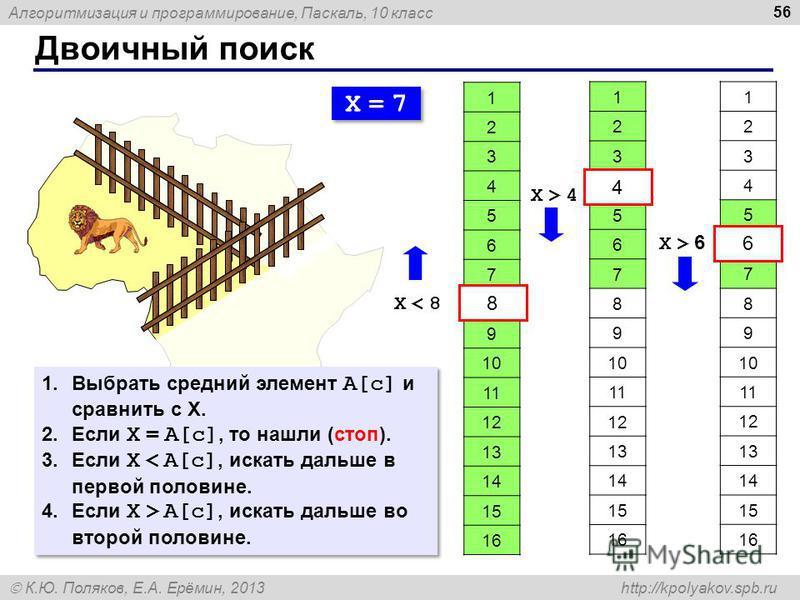 Алгоритмизация и программирование, Паскаль, 10 класс К.Ю. Поляков, Е.А. Ерёмин, 2013 http://kpolyakov.spb.ru Двоичный поиск 56 1 2 3 4 5 6 7 8 9 10 11 12 13 14 15 16 X = 7X = 7 X = 7X = 7 X < 8X < 8 8 1 2 3 4 5 6 7 8 9 10 11 12 13 14 15 16 4 X > 4X >