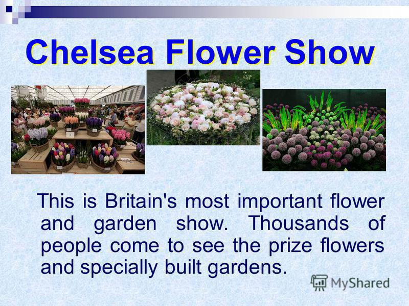 Chelsea Flower Show This is Britain's most important flower and garden show. Thousands of people come to see the prize flowers and specially built gardens.