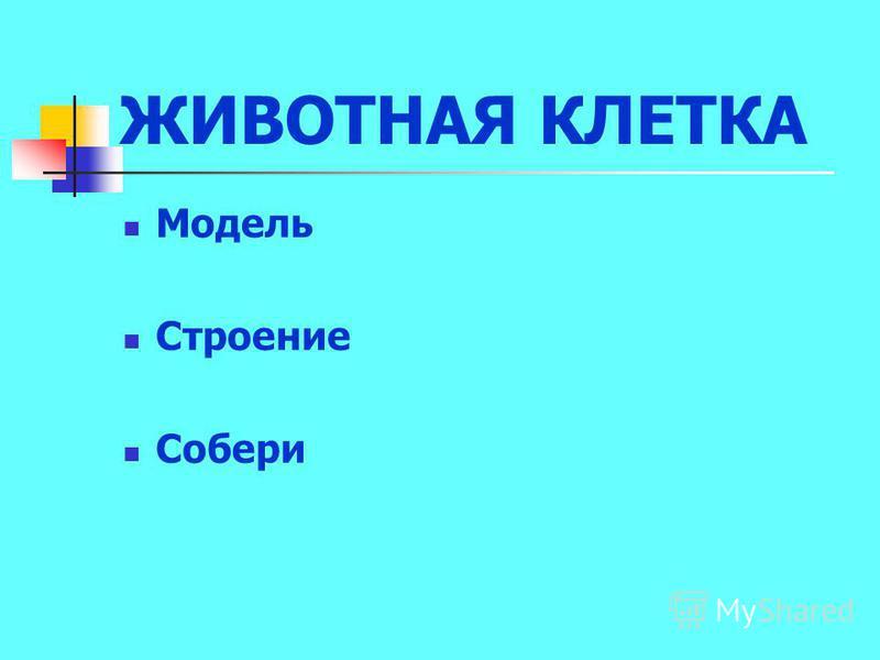 ЖИВОТНАЯ КЛЕТКА Модель Строение Собери