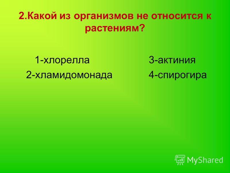 2. Какой из организмов не относится к растениям? 1-хлорелла 3-актиния 2-хламидомонада 4-спирогира