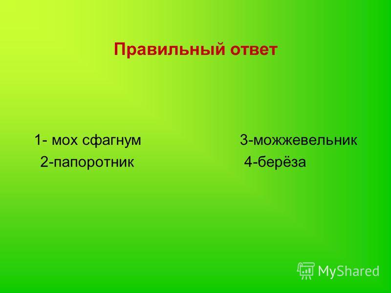 Правильный ответ 1- мох сфагнум 3-можжевельник 2-папоротник 4-берёза