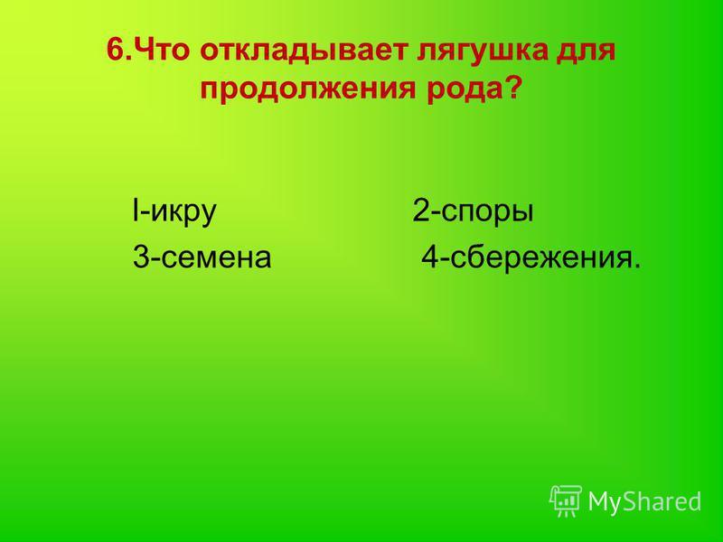 6. Что откладывает лягушка для продолжения рода? l-икру 2-споры 3-семена 4-сбережения.