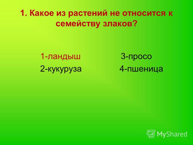 1. Какое из растений не относится к семейству злаков? 1-ландыш 3-просо 2-кукуруза 4-пшеница