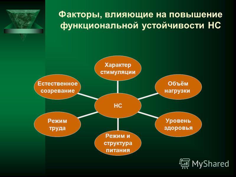 Факторы, влияющие на повышение функциональной устойчивости НС НС Характер стимуляции Объём нагрузки Уровень здоровья Режим и структура питания Режим труда Естественное созревание