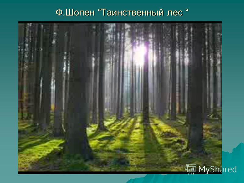 Ф.Шопен Таинственный лес Ф.Шопен Таинственный лес