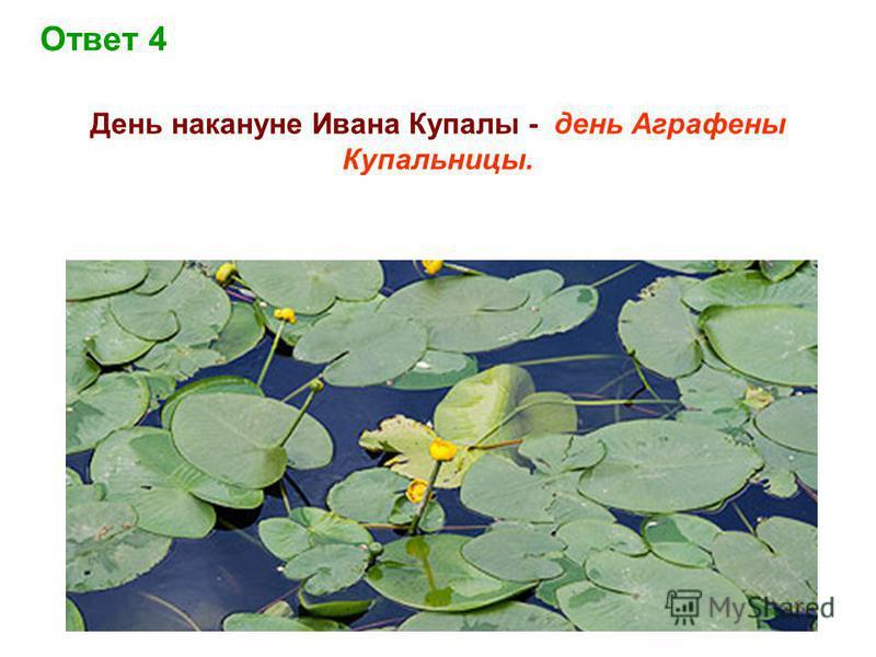 Ответ 4 День накануне Ивана Купалы - день Аграфены Купальницы.